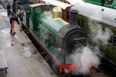 C Class steam engine at Sheffield Park station — Stock Photo