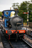 Bluebell Steam Engine coming into Sheffield Park Station — Photo