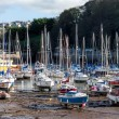 Ilfracombe harbour — Stock Photo #41630893