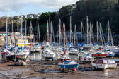 Ilfracombe harbour — Stock Photo
