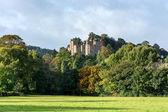 замок dunster — Стоковое фото