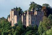 Castelo de dunster — Foto Stock