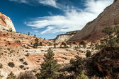 Ancient escarpment in Zion National Park — Stock Photo
