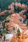 Scenic view of Bryce Canyon Southern Utah USA — Stock Photo