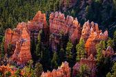 Anel de rochas vermelhas — Fotografia Stock