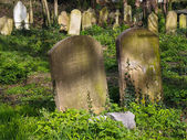 View of St Mary of Charity Church graveyard in Faversham Kent on March 29, 2014 — Photo