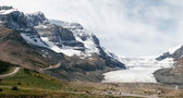 Athabasca Glacier in Jasper National Park — Stock Photo