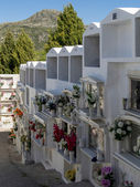 View of the cemetery in Casares Spain — Stock Photo