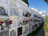 View of the cemetery in Casares Spain — Stockfoto