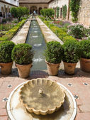 Fountain in the Alhambra Palace gardens — Stock Photo