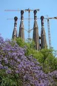 La Sagrada Familia  in Barcelona  — Stock Photo