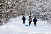 Zimní scéna v Leamington Spa — Stock fotografie