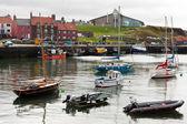 View of Dunbar harbour — Stock Photo