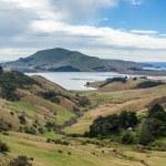 Otago peninsular — Stock Photo #49996825