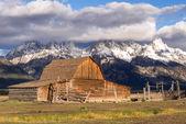View of Mormon Row near Jackson Wyoming — Stock Photo