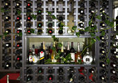Wine rack — Stock Photo