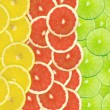 Abstract background of citrus slices — Stock Photo #37490653