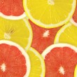 Stock Photo: Abstract background of citrus slices.