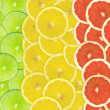 Abstract background of citrus slices — Stock Photo #37494459