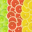 Abstract background of citrus slices — Stock Photo #37497433