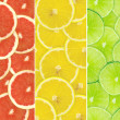 Abstract background of citrus slices — Stock Photo #37497977