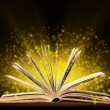 Book. Opened book with special light. Education — Stock Photo #37498301