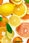 Mix di fetta sitrus — Foto Stock