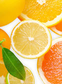 Mix of citrus slice — Stock Photo