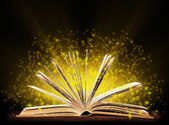 Book. Opened book with special light. Education — Stok fotoğraf