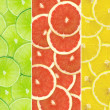 Abstract background of citrus slices — Stock Photo #37500071