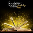 Book. Opened book with special light. Education — Stock Photo
