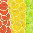 Abstract background of citrus slices — Stock Photo #37502605
