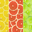 Abstract background of citrus slices — Stock Photo #37502663
