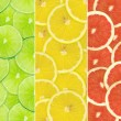 Abstract background of citrus slices — Stock Photo #37504485