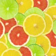 Abstract background of citrus slices — Stock Photo #37504997