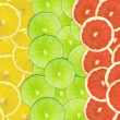 Abstract background of citrus slices — Stock Photo #37509083