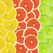 Abstract background of citrus slices — Stock Photo #37510461