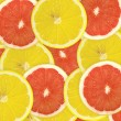 Abstract background of citrus slices. — Stock Photo #37513697