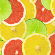 Abstract background of citrus slices — Stock Photo #37514463