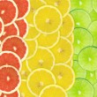 Abstract background of citrus slices — Stock Photo #37514863