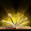 Book. Opened book with special light. Education — Stock Photo #37516875