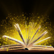 Stock Photo: Book. Opened book with special light. Education