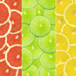 Abstract background of citrus slices — Stock Photo #37517633
