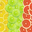 Abstract background of citrus slices — Stock Photo #37519717