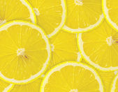 Abstract background with citrus-fruit of lemon slices. — Stock Photo