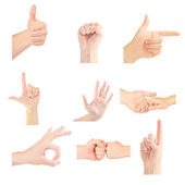 Set of gesturing hands isolated on white background — Stock Photo