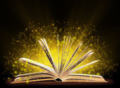 Book. Opened book with special light. Education — Stockfoto