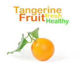 Tangerine with green leaves isolated on white — Stock Photo