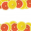Abstract background of citrus slices. — Stock Photo #37522975