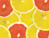 Abstraktní pozadí citrusové řezy. — Stock fotografie